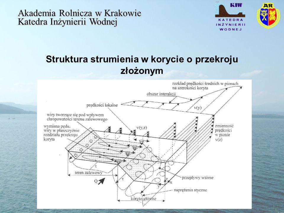 Struktura strumienia w korycie o przekroju złożonym