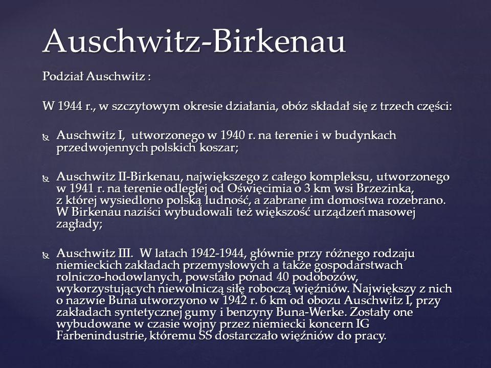 Auschwitz-Birkenau Podział Auschwitz :
