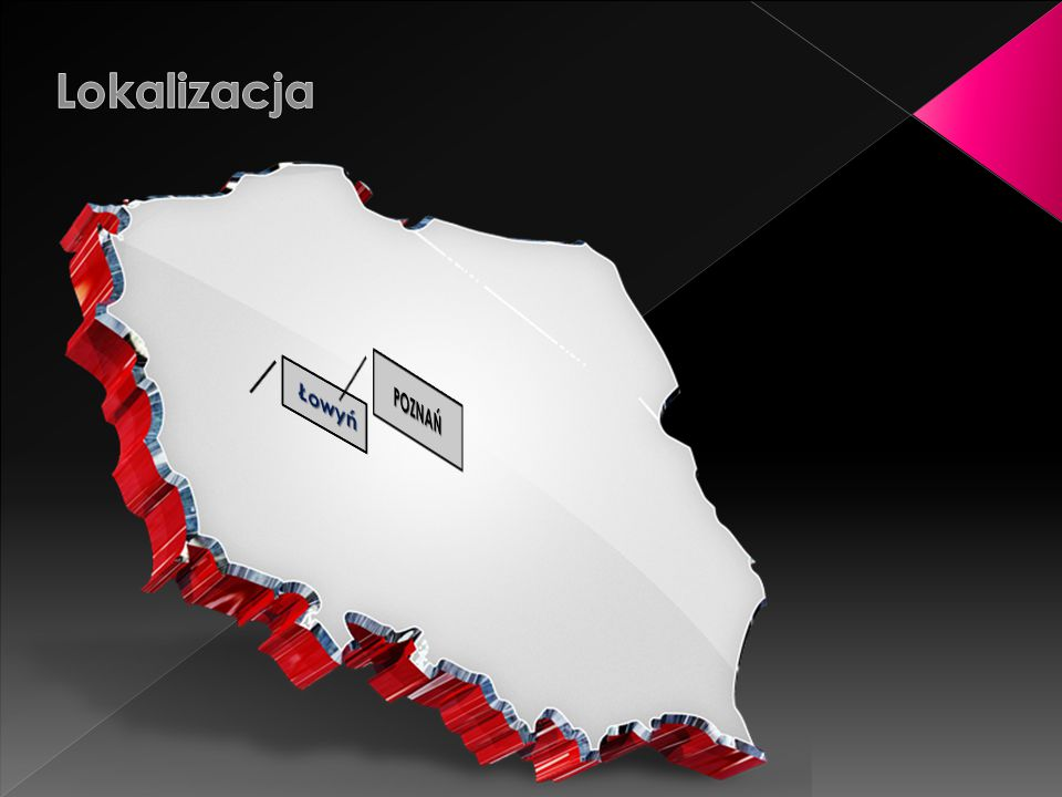 Lokalizacja Łowyń POZNAŃ