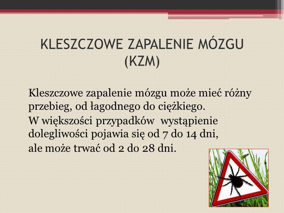 KLESZCZOWE ZAPALENIE MÓZGU (KZM)