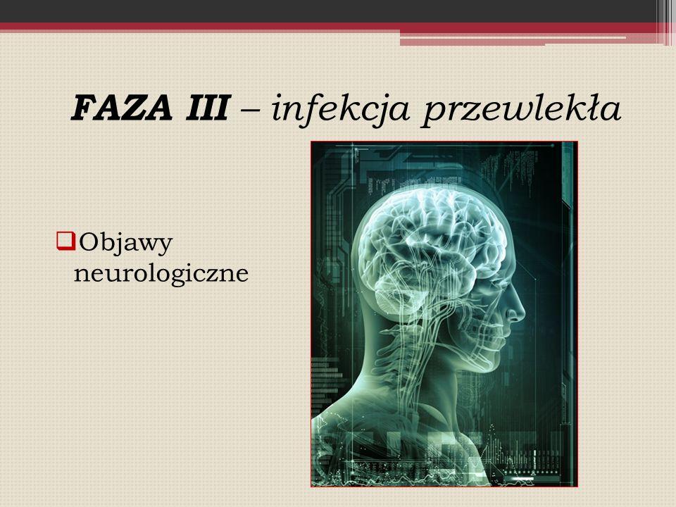 FAZA III – infekcja przewlekła
