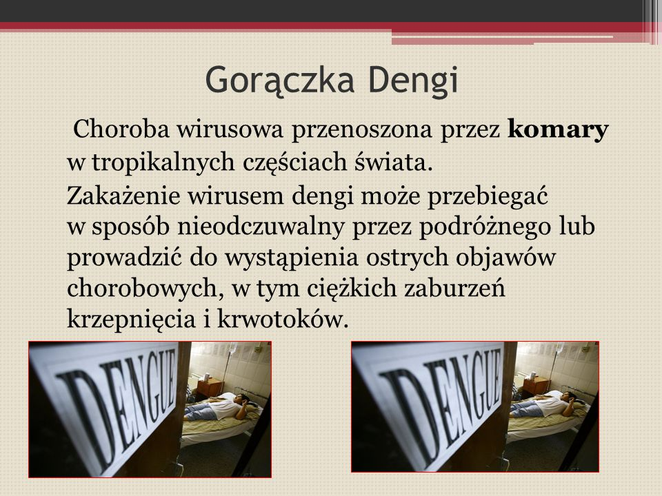 Gorączka Dengi