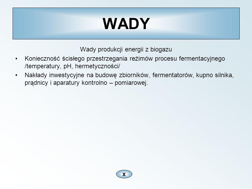 Wady produkcji energii z biogazu