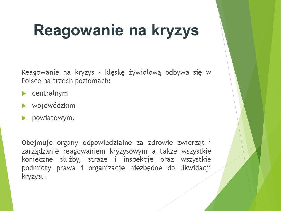 Reagowanie na kryzys Reagowanie na kryzys – klęskę żywiołową odbywa się w Polsce na trzech poziomach: