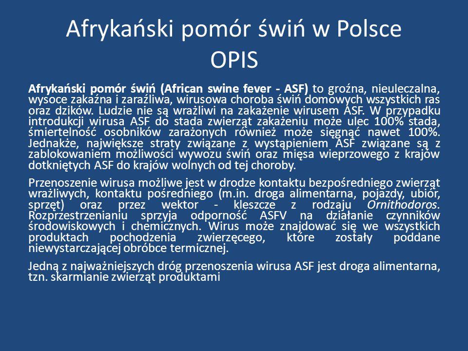 Afrykański pomór świń w Polsce OPIS