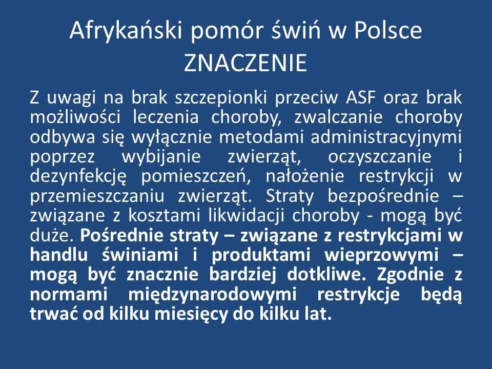 Afrykański pomór świń w Polsce ZNACZENIE