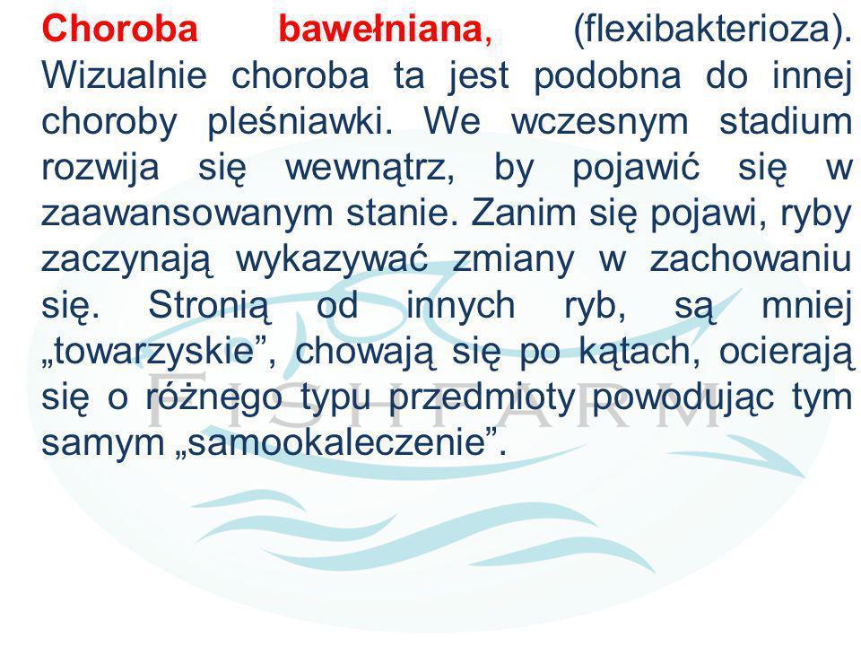 Choroba bawełniana, (flexibakterioza)