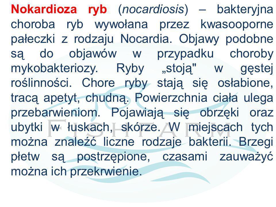 Nokardioza ryb (nocardiosis) – bakteryjna choroba ryb wywołana przez kwasooporne pałeczki z rodzaju Nocardia.