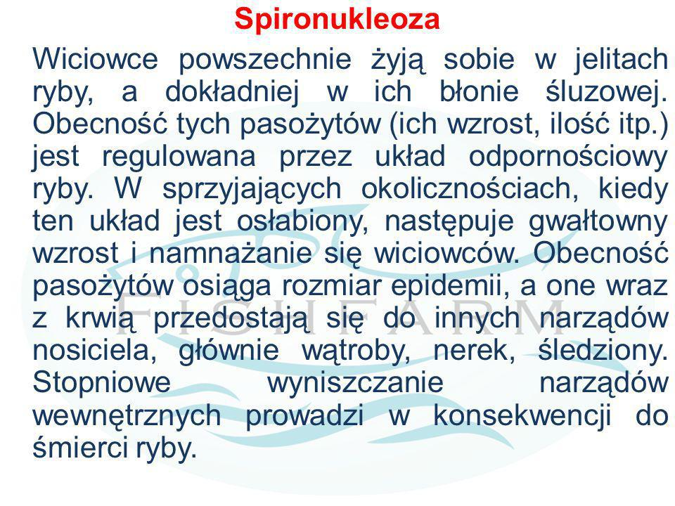 Spironukleoza
