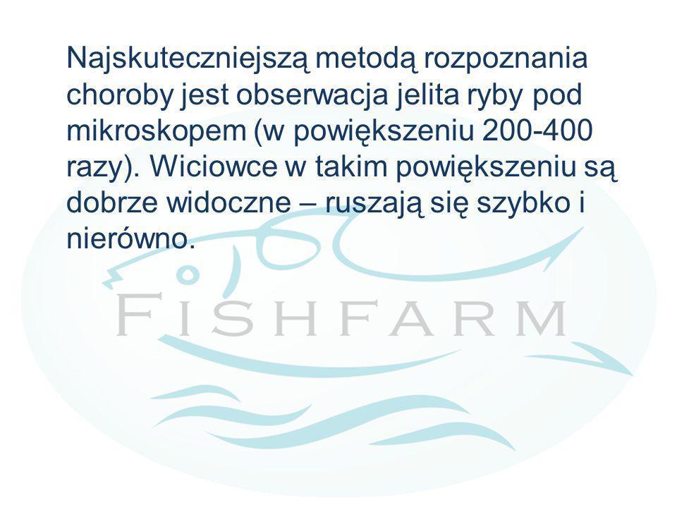 Najskuteczniejszą metodą rozpoznania choroby jest obserwacja jelita ryby pod mikroskopem (w powiększeniu 200-400 razy).