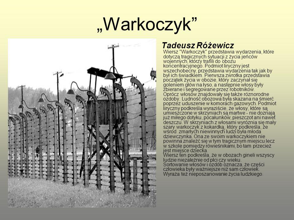 """""""Warkoczyk"""