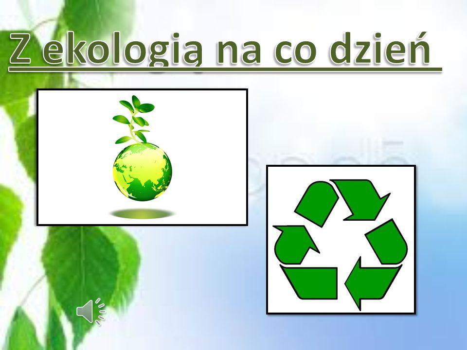 Z ekologią na co dzień