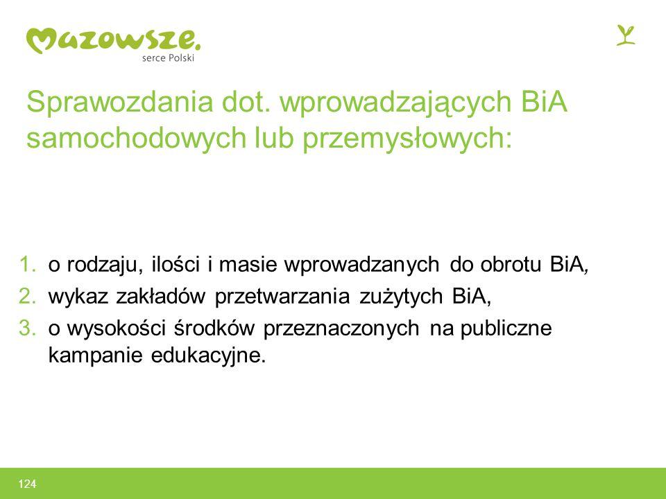 Sprawozdania dot. wprowadzających BiA samochodowych lub przemysłowych: