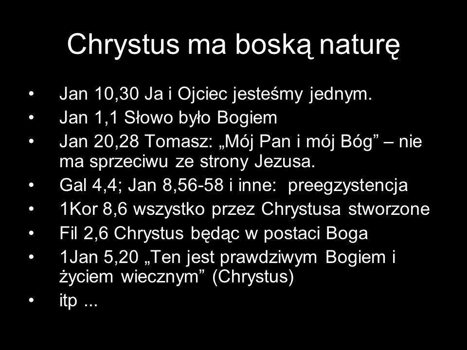 Chrystus ma boską naturę