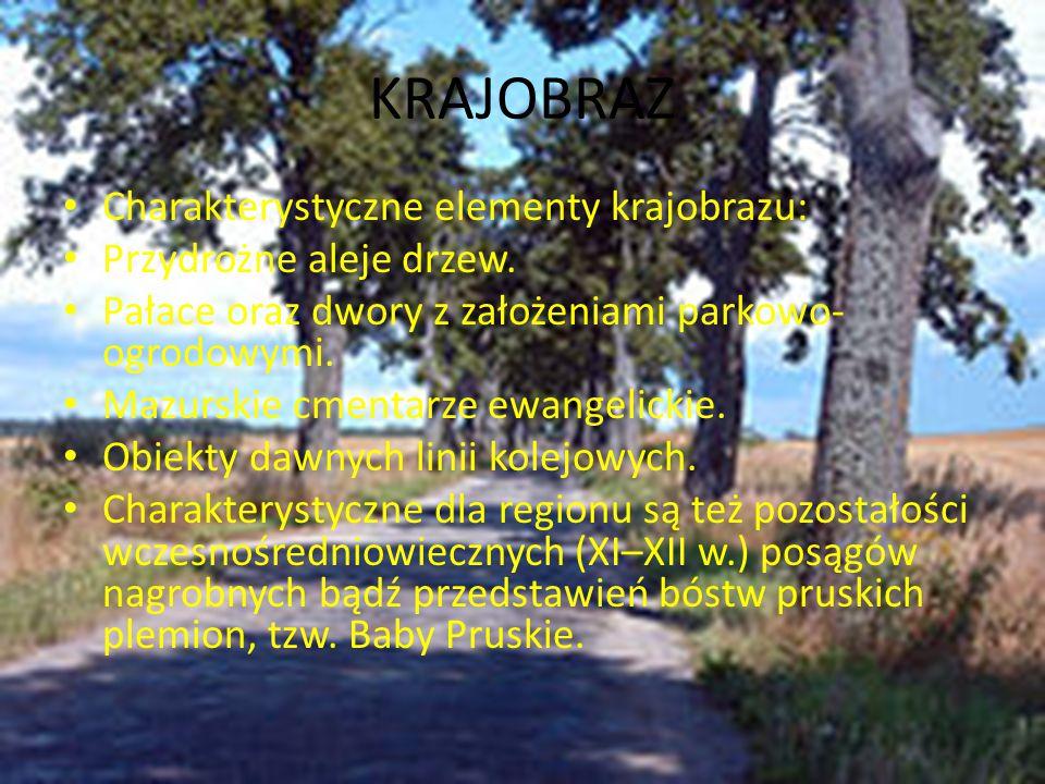 KRAJOBRAZ Charakterystyczne elementy krajobrazu: