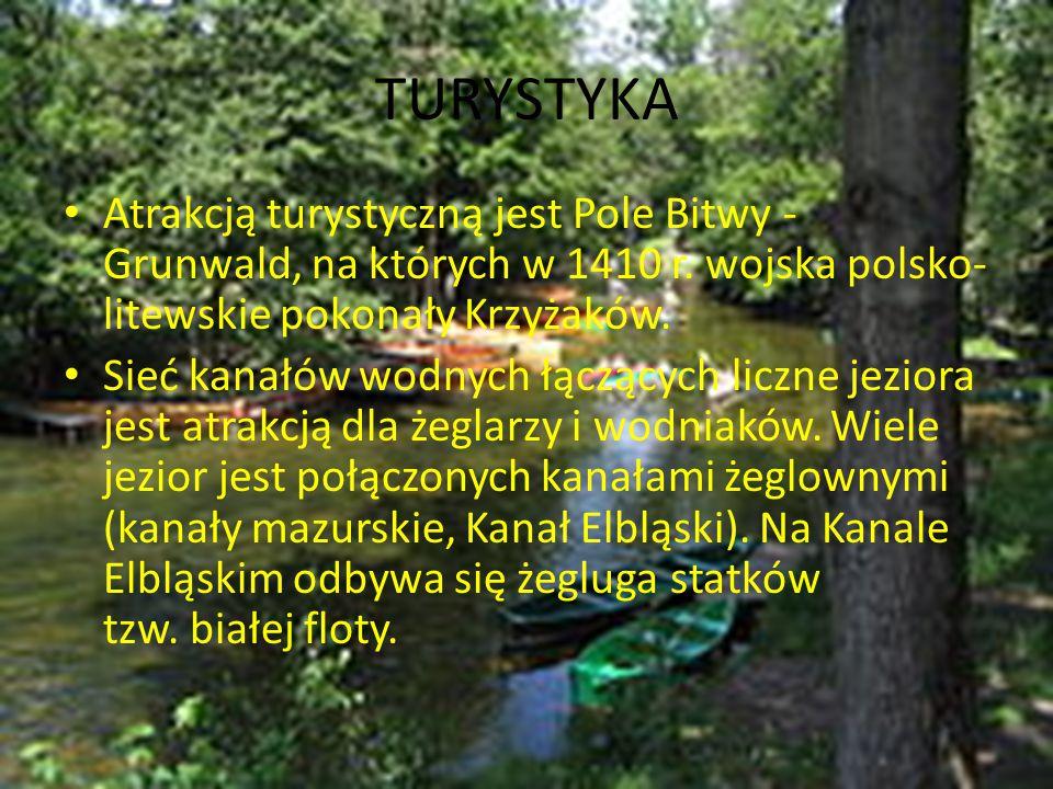 TURYSTYKA Atrakcją turystyczną jest Pole Bitwy - Grunwald, na których w 1410 r. wojska polsko-litewskie pokonały Krzyżaków.