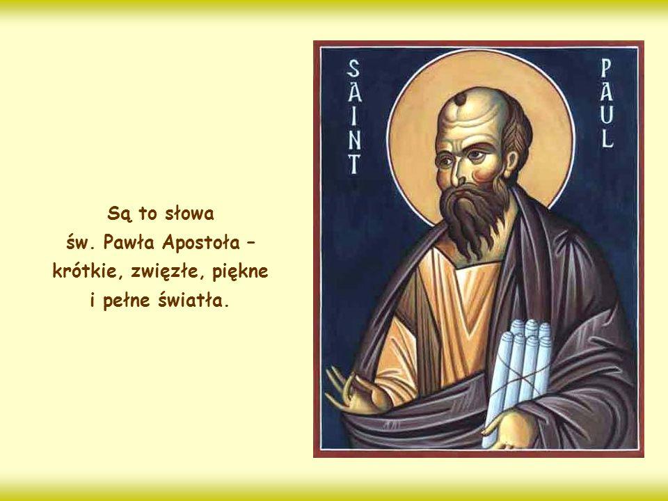 Są to słowa św. Pawła Apostoła – krótkie, zwięzłe, piękne i pełne światła.