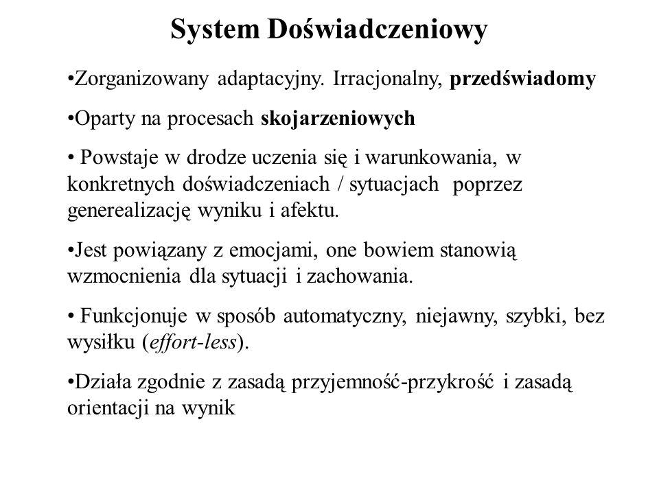 System Doświadczeniowy