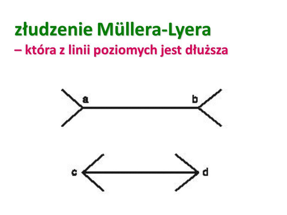 złudzenie Müllera-Lyera – która z linii poziomych jest dłuższa