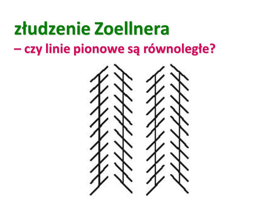 złudzenie Zoellnera – czy linie pionowe są równoległe