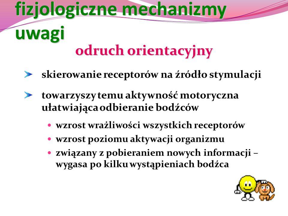 fizjologiczne mechanizmy uwagi
