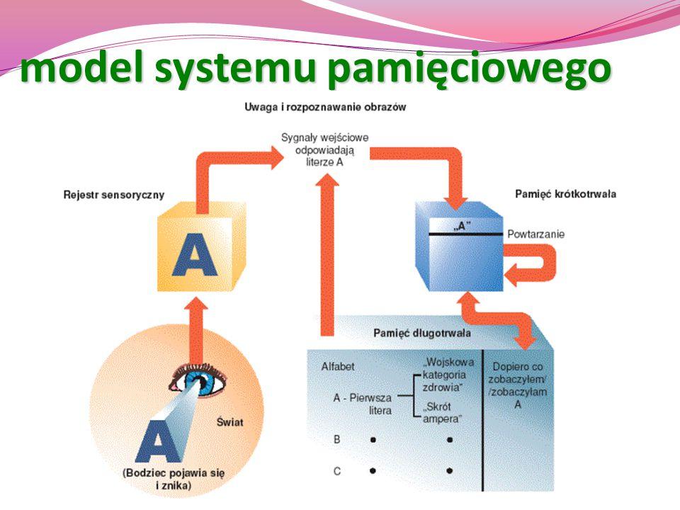 model systemu pamięciowego