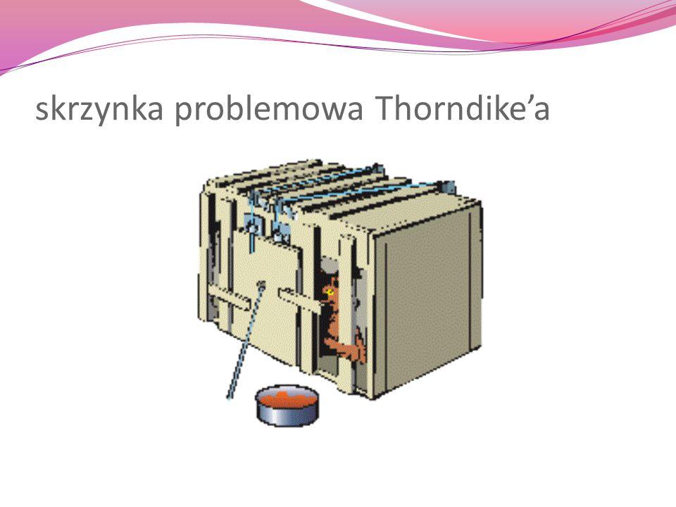 skrzynka problemowa Thorndike'a