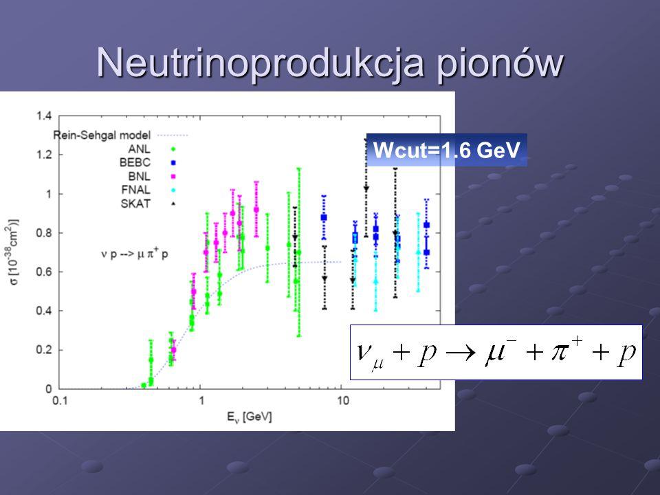 Neutrinoprodukcja pionów