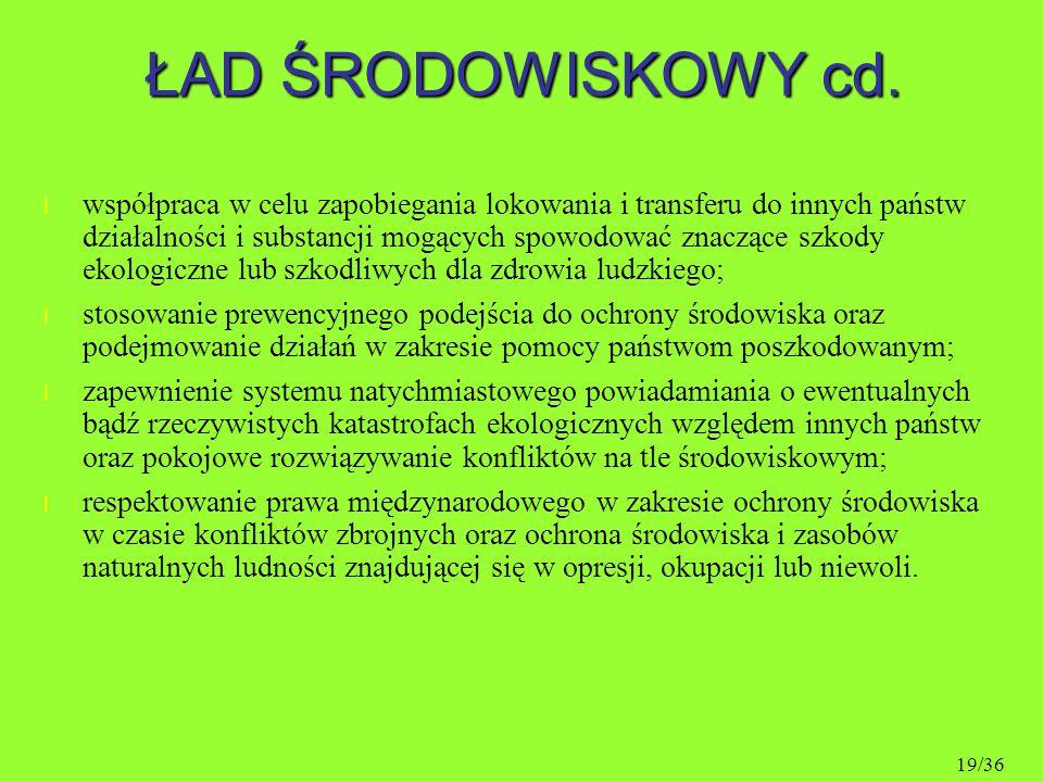 ŁAD ŚRODOWISKOWY cd.