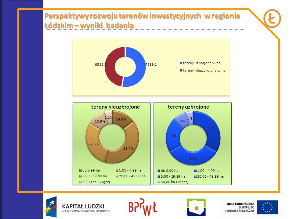 Perspektywy rozwoju terenów inwestycyjnych w regionie