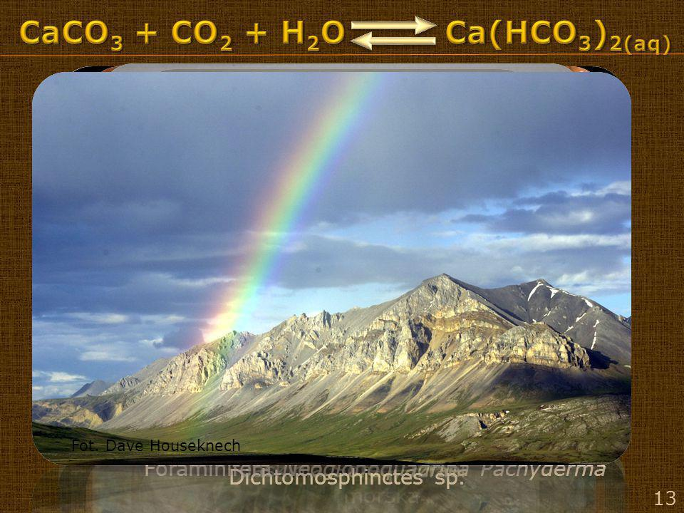 CaCO3 + CO2 + H2O Ca(HCO3)2(aq) Zatoka HaLong, Wietnam – erozja morska