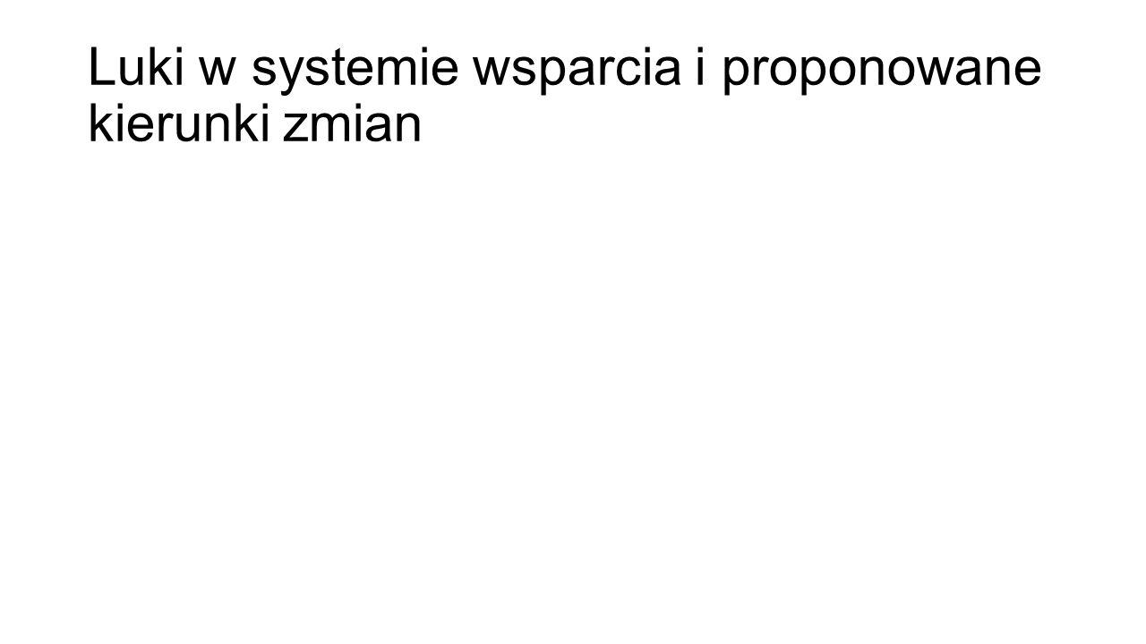 Luki w systemie wsparcia i proponowane kierunki zmian