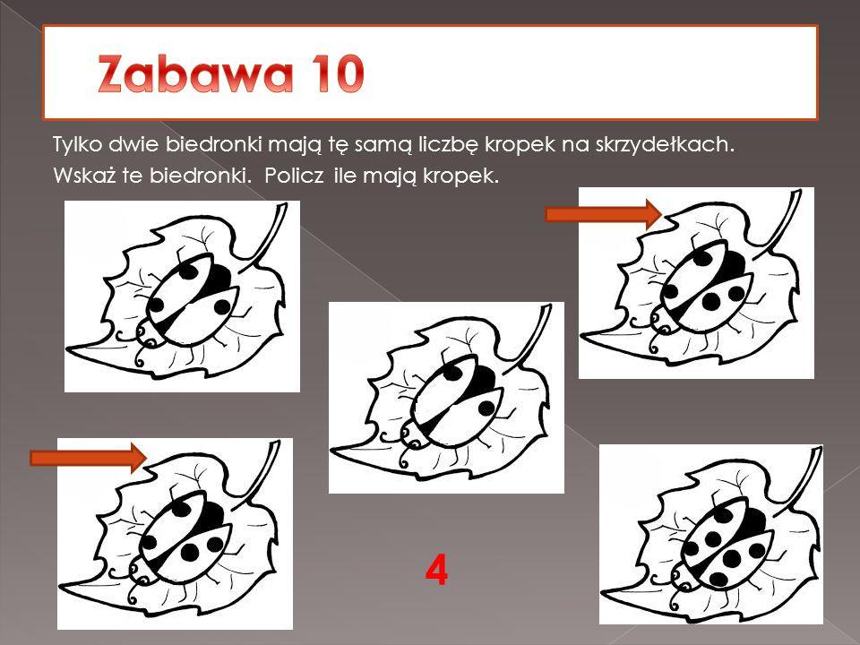 Zabawa 10 Tylko dwie biedronki mają tę samą liczbę kropek na skrzydełkach. Wskaż te biedronki. Policz ile mają kropek.