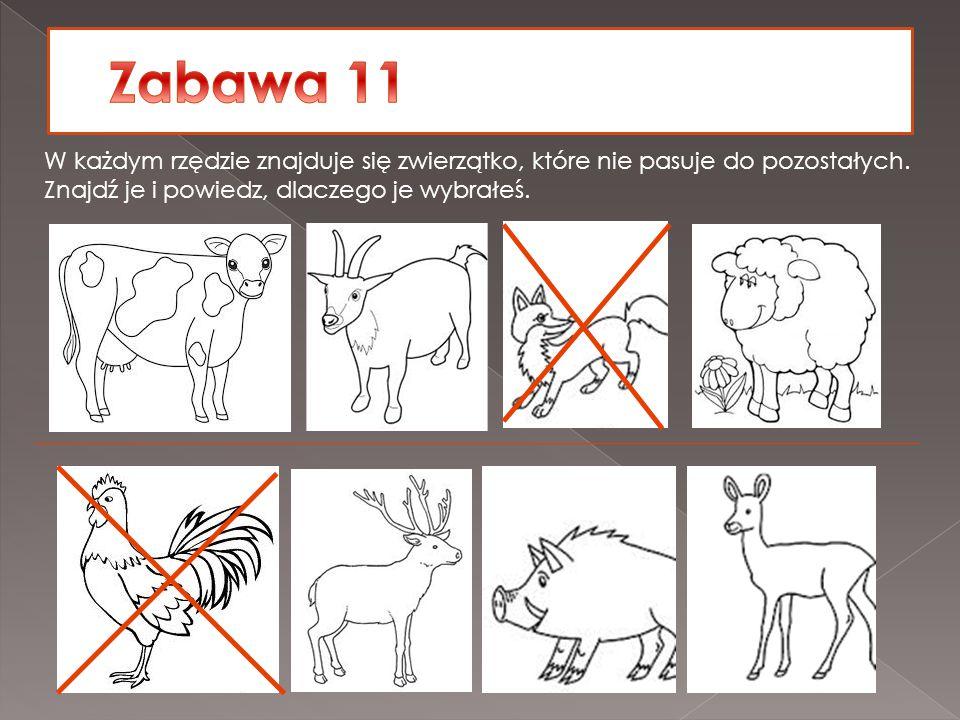 Zabawa 11 W każdym rzędzie znajduje się zwierzątko, które nie pasuje do pozostałych.