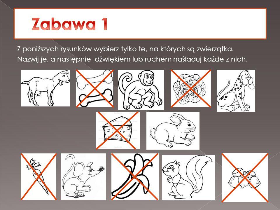 Zabawa 1 Z poniższych rysunków wybierz tylko te, na których są zwierzątka.