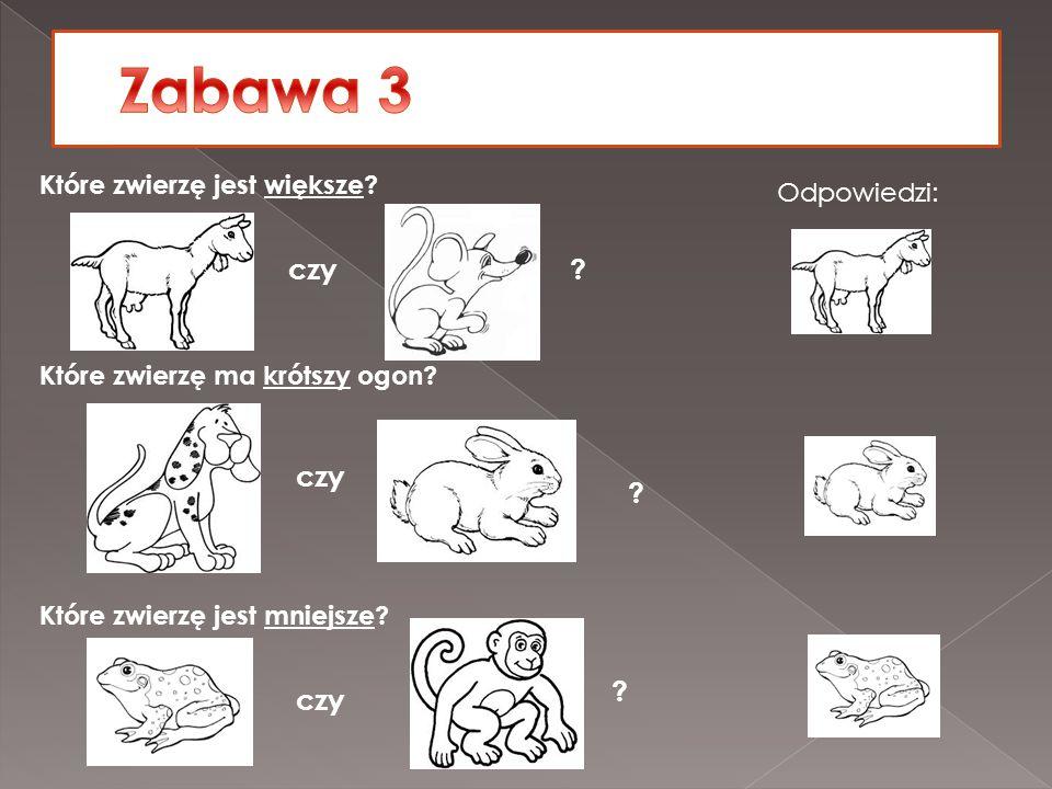 Zabawa 3 czy czy czy Które zwierzę jest większe Odpowiedzi:
