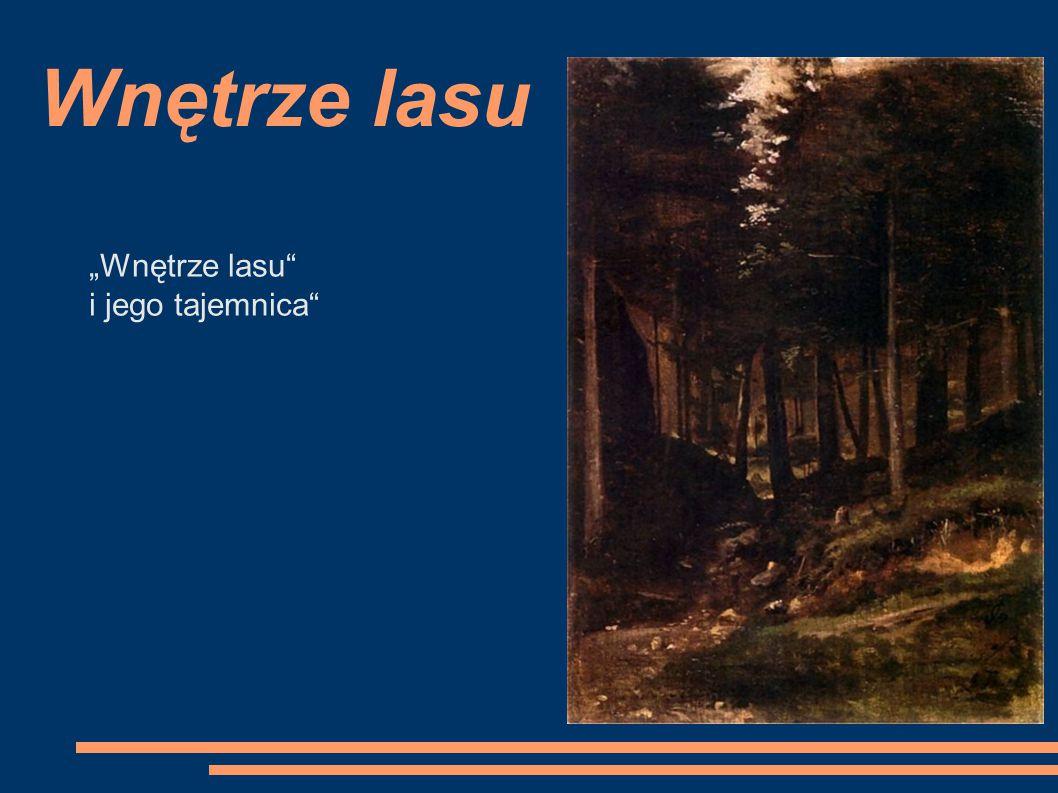 """Wnętrze lasu """"Wnętrze lasu i jego tajemnica"""