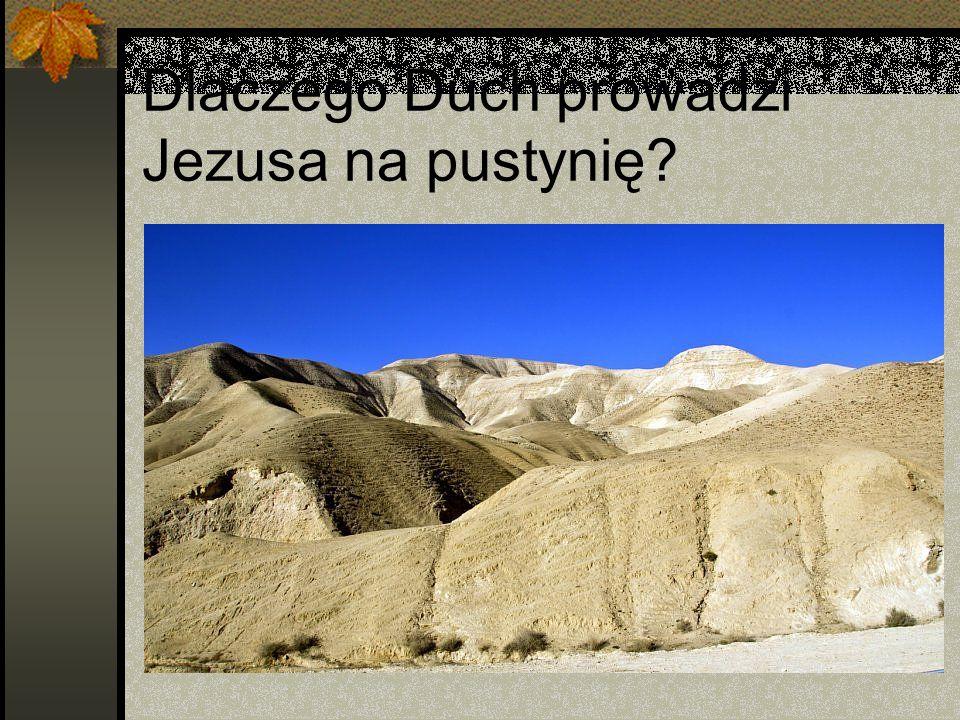 Dlaczego Duch prowadzi Jezusa na pustynię