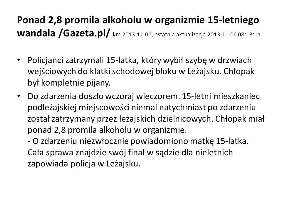 Ponad 2,8 promila alkoholu w organizmie 15-letniego wandala /Gazeta
