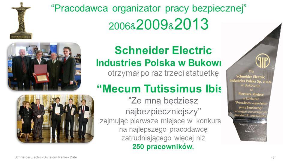 Pracodawca organizator pracy bezpiecznej 2006&2009&2013