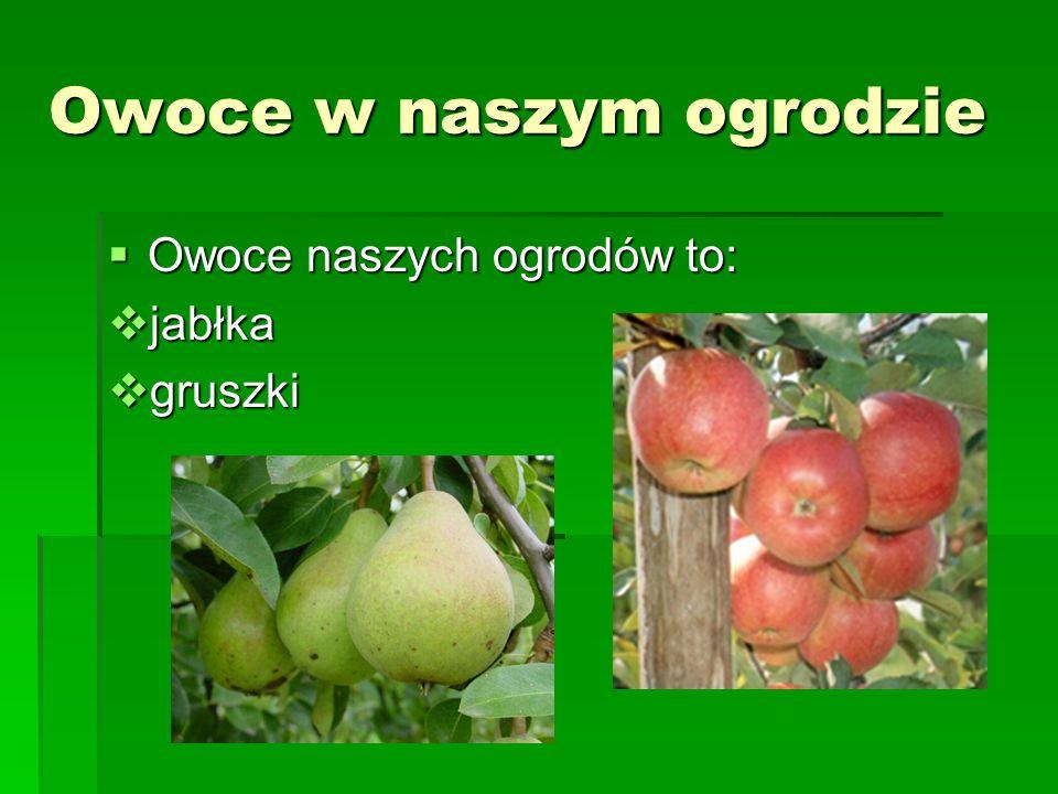 Owoce w naszym ogrodzie