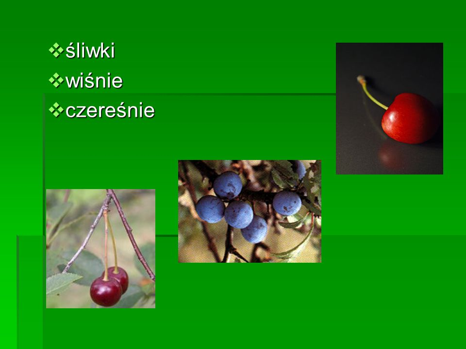 śliwki wiśnie czereśnie