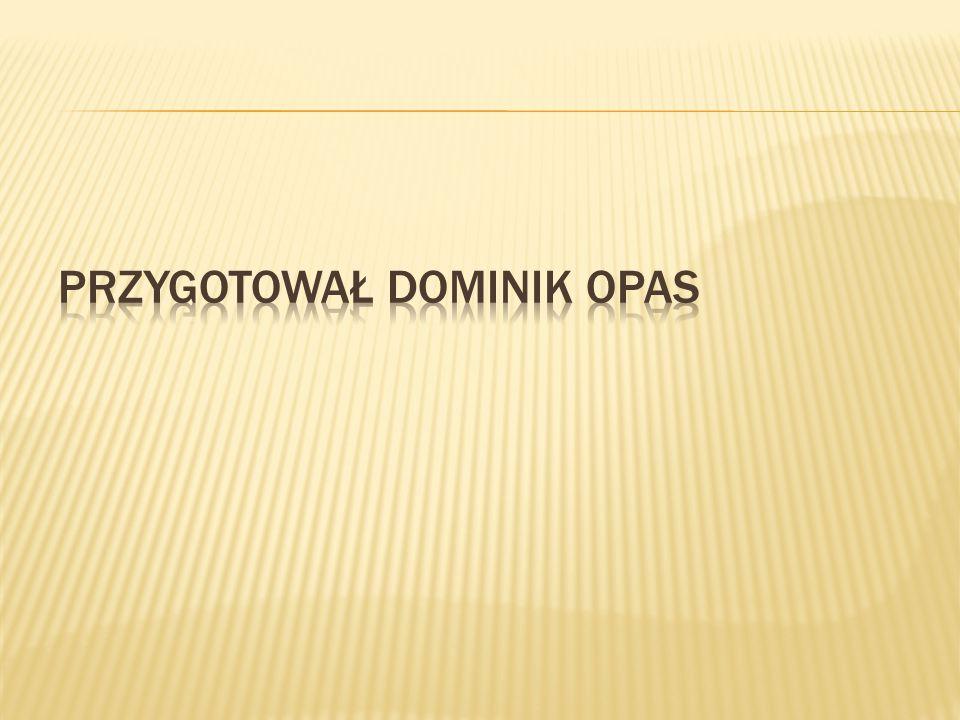 Przygotował Dominik Opas