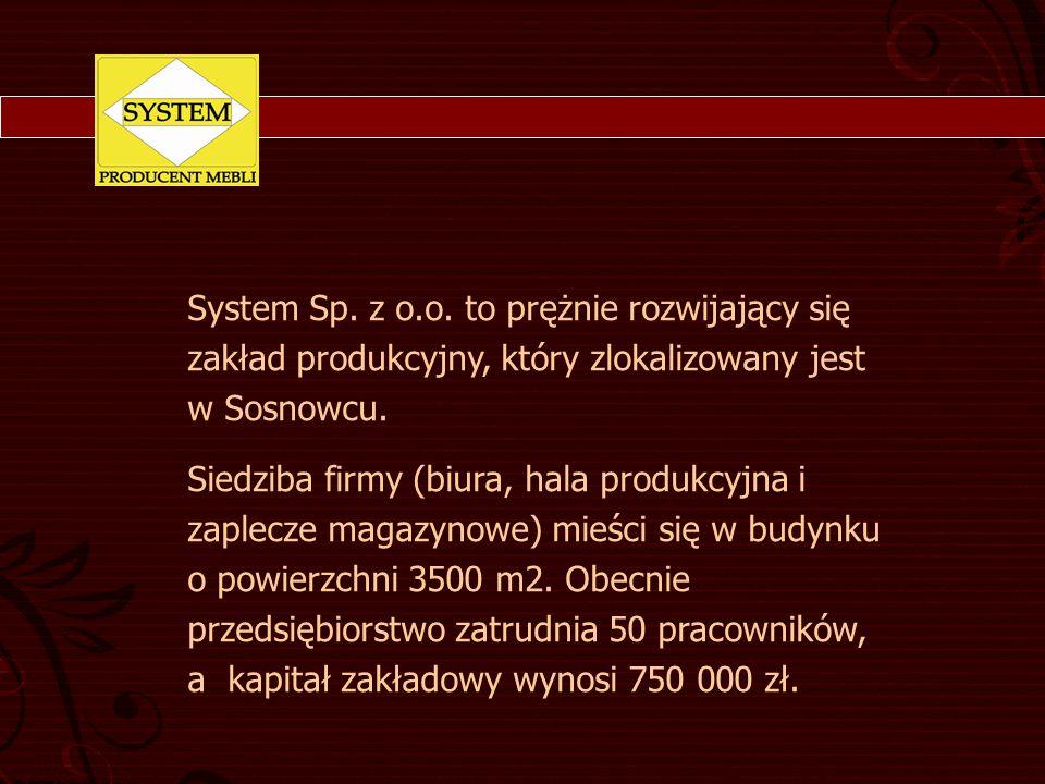 System Sp. z o.o. to prężnie rozwijający się zakład produkcyjny, który zlokalizowany jest w Sosnowcu.