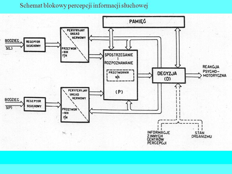 Schemat blokowy percepcji informacji słuchowej