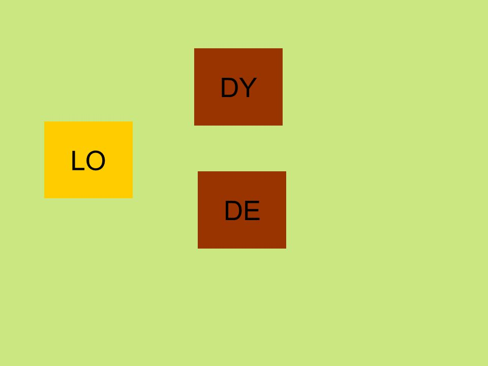 DY LO DE