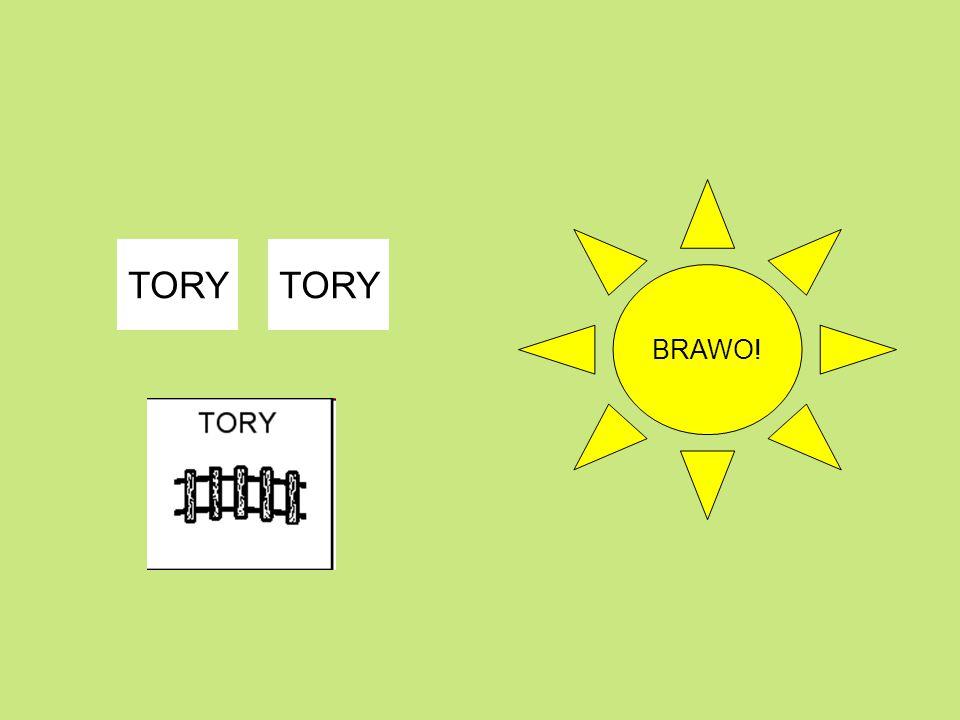 BRAWO! TORY TORY