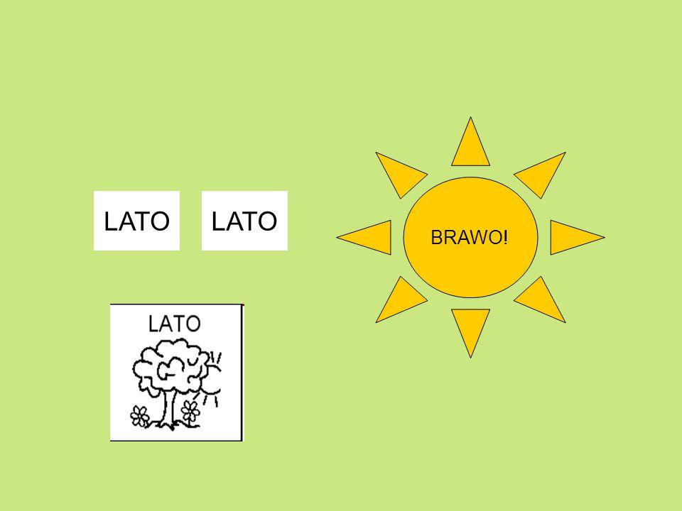 BRAWO! LATO LATO