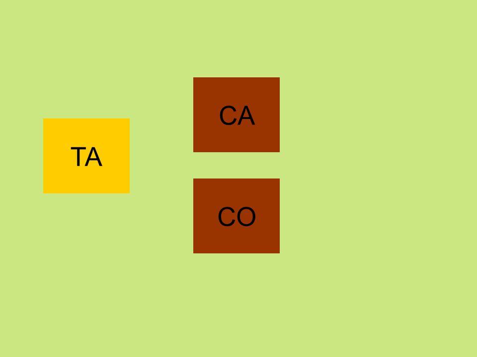 CA TA CO