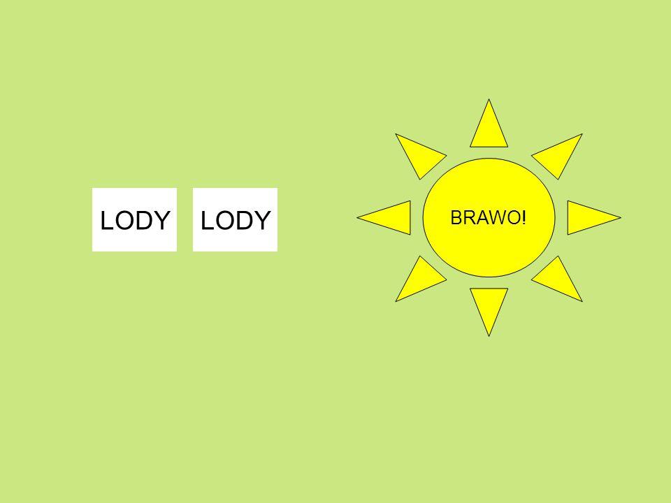 BRAWO! LODY LODY